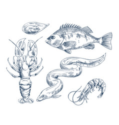 Sea inhabitant for seafood restaurant vector