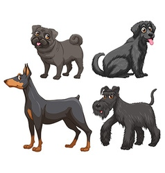 Different kind of dogs vector image vector image