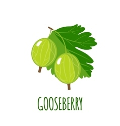 Gooseberry icon in flat style on white background vector