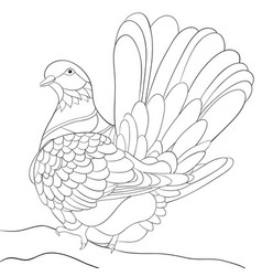 adult coloring bookpage a cute dove on the brunch vector image