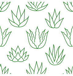 Aloe vera background agave plant seamless pattern vector