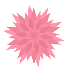 graphic flower icon triangle star shape pink vector image