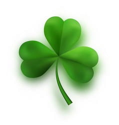 green tree leaf clovers irish lucky and success vector image