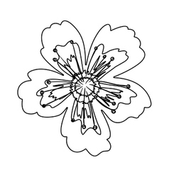 silhouette petals of flower with pistils vector image
