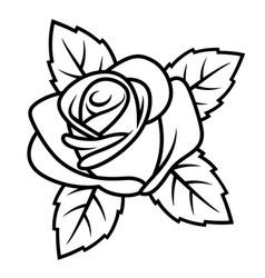 rose sketch 001 vector image vector image