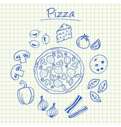 pizza doodles squared paper vector image vector image