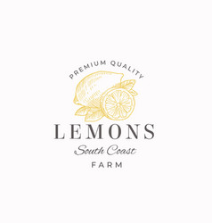 lemon fruit farms abstract sign symbol or vector image