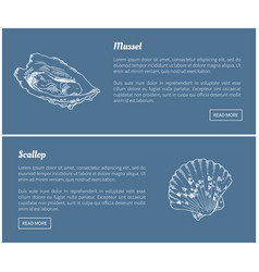 Mussel and scallop vintage vector