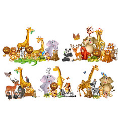 set wild animals in groups on white background vector image