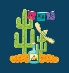 Tequila bottle day of the dead party vector