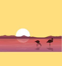 lake scene with silhouette flamingo vector image vector image