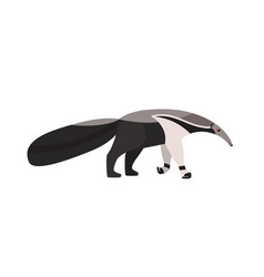 anteater isolated on white background adorable vector image