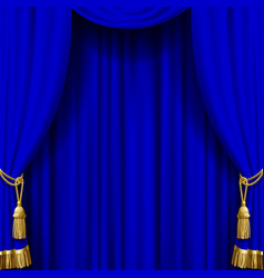 Blue curtain with gold tassels vector