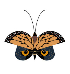 butterfly or owl vector image