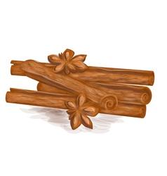 Cinnamon vector