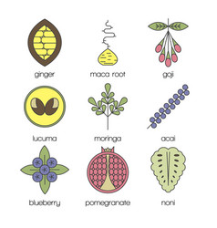 color superfood line icons set vector image