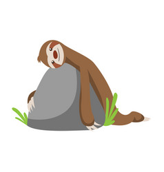 Cute basloth lies on a stone funny vector
