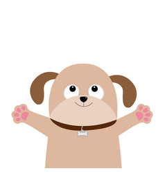 Dog puppy face pet collection pooch looking up vector