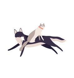 funny cat riding on running dog having fun vector image