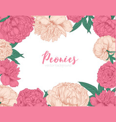 horizontal backdrop decorated with frame or border vector image