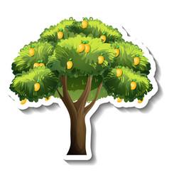 Mango tree sticker on white background vector
