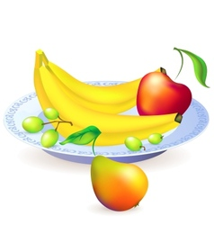 Plate of fruits vector image