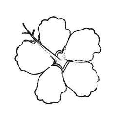 Hibiscus flower icon image vector