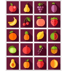 Fruits Flat Icon with Long Shadow vector image