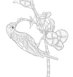 Adult coloring bookpage a cute hummingbird gather vector