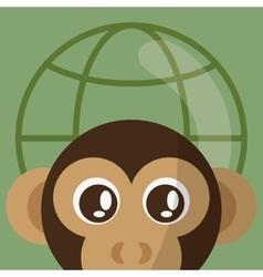 Animal design monkey icon Isolated vector