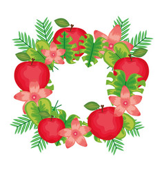 Fresh apples fruits with flowers and leafs frame vector
