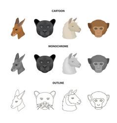Kangaroos llama monkey panther realistic vector