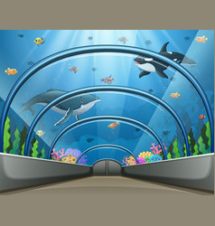 Public aquarium with fish and coral reef vector