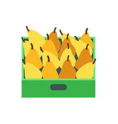 shelf with pears supermarket grocery store vector image