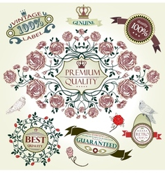 Vintage set retro design elements vector image