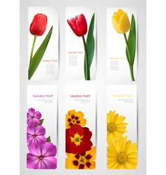 set of banners with colorful flowers vector image