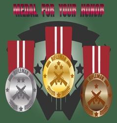 Medal skill honor rifleman set vector image vector image