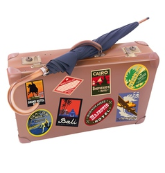 Suitcase Umbrella vector image vector image