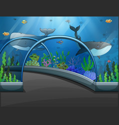 Aquarium scene with sea animals vector