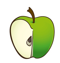 Fruit design vector