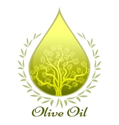 Olive oil label or emblem vector