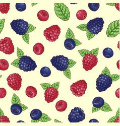 seamless pattern of wild berries vector image