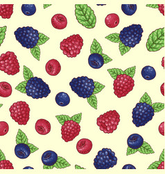 seamless pattern wild berries vector image