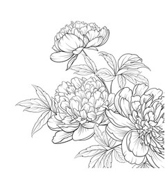 Spring flowers bouquet peony garland vector