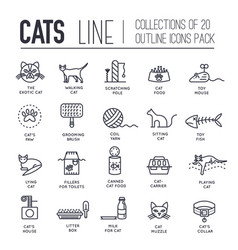 Thin line breed cats icons set cute vector