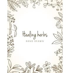 Vintage card of medicinal organic healing herbs vector