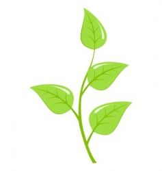 Young sapling vector