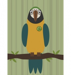 parrot on branch vector image vector image