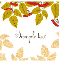 Retro background with leaves and berries vector image vector image