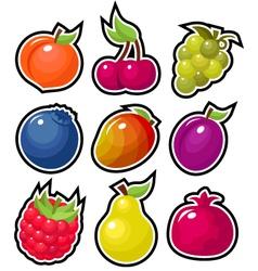yummy fruits vector image